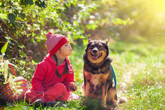 Little girl with dog Stock Photo