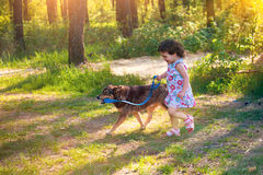 Little girl with dog Stock Photos