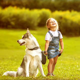 Little girl with a dog Husky Stock Photo