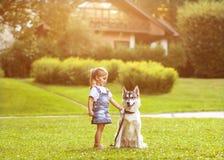 Little girl with a dog Husky stock photography
