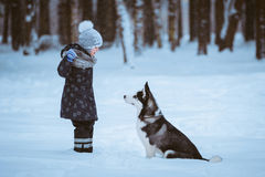 Little girl with the dog royalty free stock image