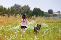 Little girl with dog on the meadow Royalty Free Stock Photos
