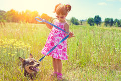 Little girl with dog Stock Images