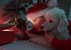 Little girl and  dog opening a present Royalty Free Stock Photography
