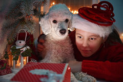 Little girl and  dog opening a present Royalty Free Stock Image
