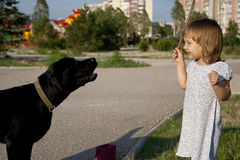 Little girl with dog outside Royalty Free Stock Image