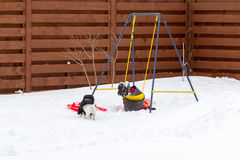 Little girl with a dog riding on a swing in snow Stock Photography