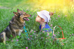 Little girl and dog sitting in the clover lawn Royalty Free Stock Photography