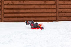 Little girl and dog sledding in snow Stock Images