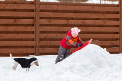Little girl and dog sledding in snow Royalty Free Stock Photos