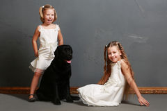 Little girl and dog in the studio Stock Photos