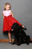 Little girl and dog in the studio Stock Photo