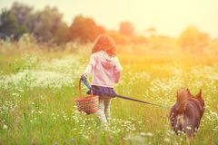 Little girl with dog walking on the field Stock Photography
