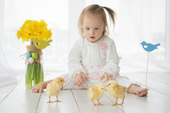 Little girl with Down syndrome playing with yellow chickens Stock Photo