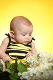 Little girl dress as bee and flowers Stock Images