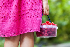 Little girl in dress child hand holdind small basket of ripe ras. Pberries. Close-up Stock Photo