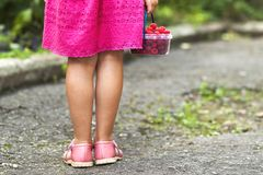 Little girl in dress child hand holdind small basket of ripe ras. Pberries. Close-up Royalty Free Stock Photos