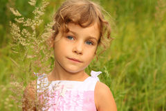 Little girl in dress stands in tall grass Royalty Free Stock Photo