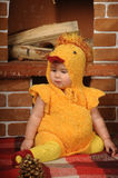 Little girl dressed as a chicken Royalty Free Stock Photography