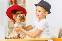Little girl is dressing her dog up. Royalty Free Stock Image