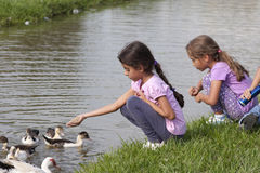 Little Girl at the Duck Pond Stock Photography