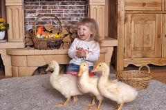 Little girl with ducklings Royalty Free Stock Image