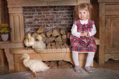 Little girl with ducklings Stock Images