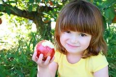 Little girl eating apple stock images