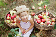 A little girl eating an apple in the garden. Harvesting apples in the garden stock images