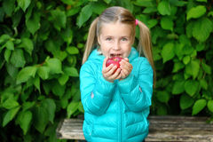 Little girl eating an apple on a wooden bench on autumn day Royalty Free Stock Photos