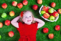 Little girl eating apples Stock Image