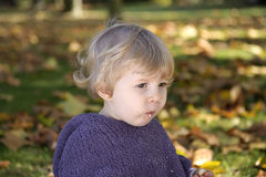Little girl eating a biscuit , outdoors Royalty Free Stock Photo