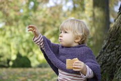 Little girl eating a biscuit , outdoors in the park Stock Photography