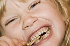 Little girl eating a cake Stock Image