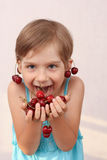 Little girl eating cherries. Little girl with handful of cherries stock photography