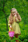 Little girl eating a strawberry. On the nature Royalty Free Stock Photo