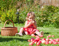 Little girl eats an apple Stock Image