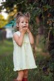 Little girl eats cherry in the garden royalty free stock image