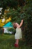 Little girl eats cherry in the garden stock image