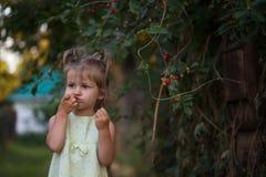Little girl eats cherry in the garden royalty free stock photos