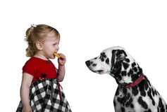 Little girl eats cookies and teases Dalmatian dog Royalty Free Stock Photography