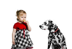Little girl eats cookies and teases Dalmatian dog Royalty Free Stock Photos
