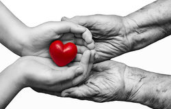 Little girl and elderly woman keeping red heart in their palms t. Ogether, isolated on white background, symbol of care and love Stock Photos