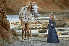 Little girl in elegant dress walking on rocky seashore with beautiful spotty horse. In bright sunlight royalty free stock photography