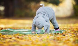 Little girl in elephant costume playing in autumn forest Royalty Free Stock Images