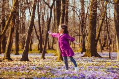 Girl inspired by nature. Little girl enjoy the sun, she is dreaming and flying, inspired by blossom meadow of saffrons Royalty Free Stock Photo