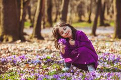 Girl inspired by nature. Little girl enjoy the sun, she is gathering the flowers, inspired by blossom meadow of saffrons Stock Photography