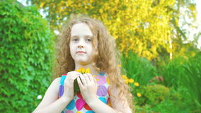 Little girl enjoy with sunflowers in summer park. Curly haired little girl enjoy with sunflowers in summer park stock video
