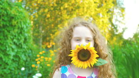 Little girl enjoy with sunflowers in summer park. Curly haired little girl enjoy with sunflowers in summer park stock video footage