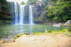 Little girl enjoying Spectacular view of Whangarei Falls,  New Zealand Stock Image